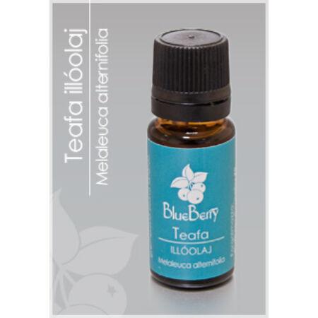 Blueberry Teafa illóolaj 10 ml